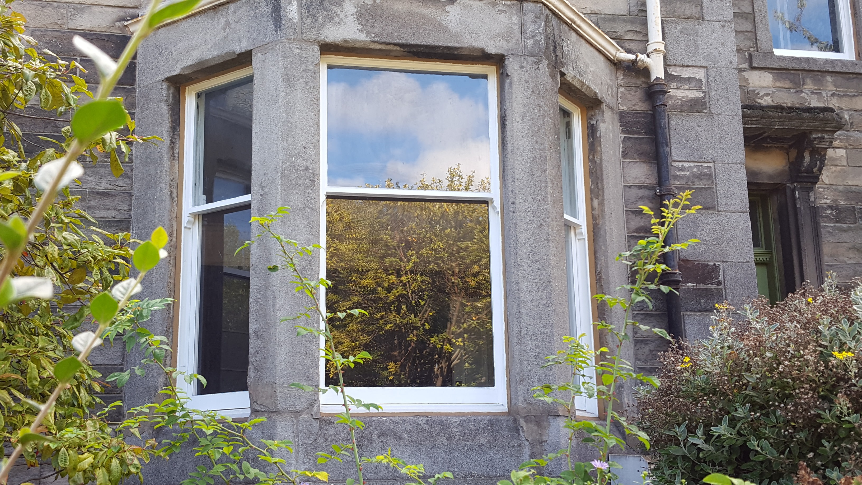 Sash and Case Window Restoration